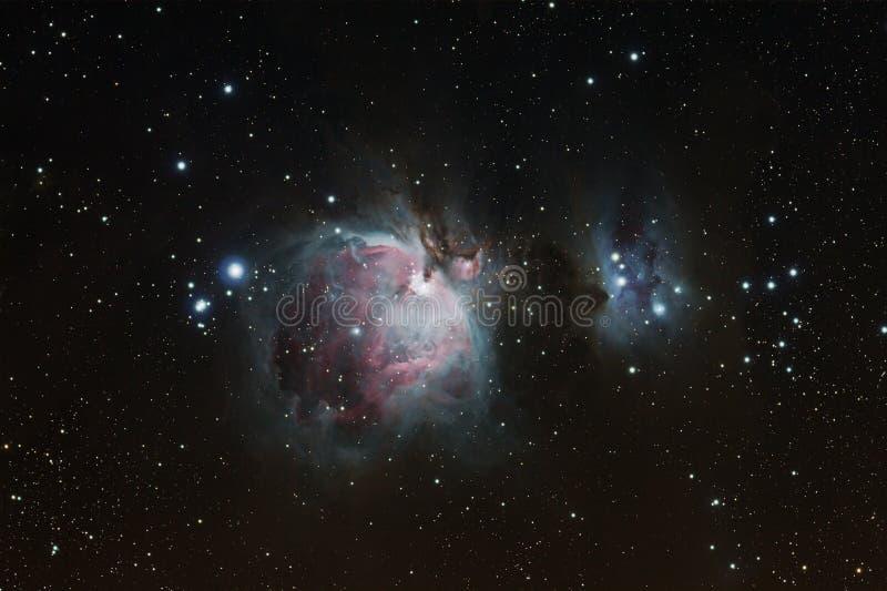 猎户星座星云 免版税库存照片