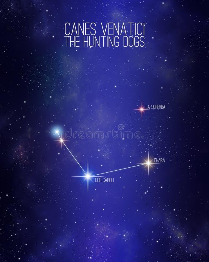 猎犬星座在满天星斗的空间背景的猎犬星座与它的主要星的名字 星相对大小 皇族释放例证
