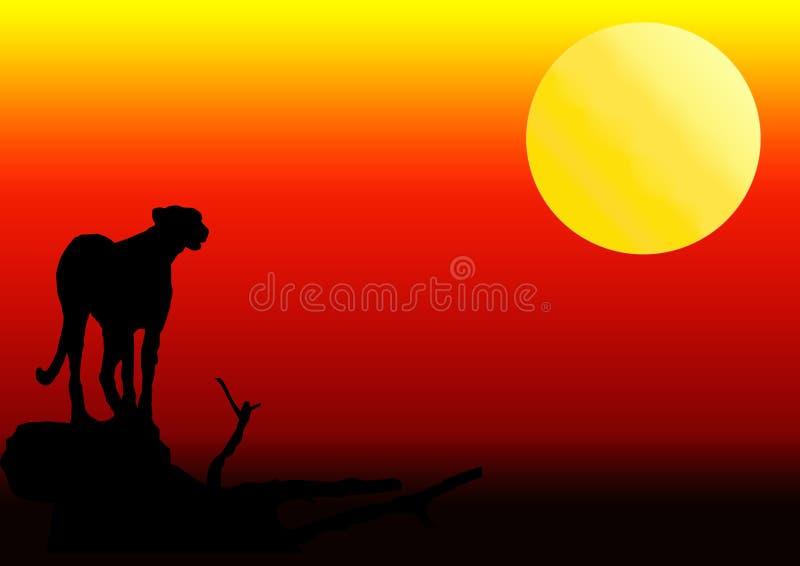 猎豹剪影日落