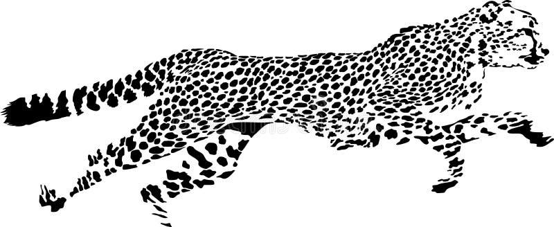 猎豹 库存例证