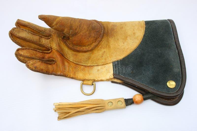 猎鹰训练术手套 免版税库存照片