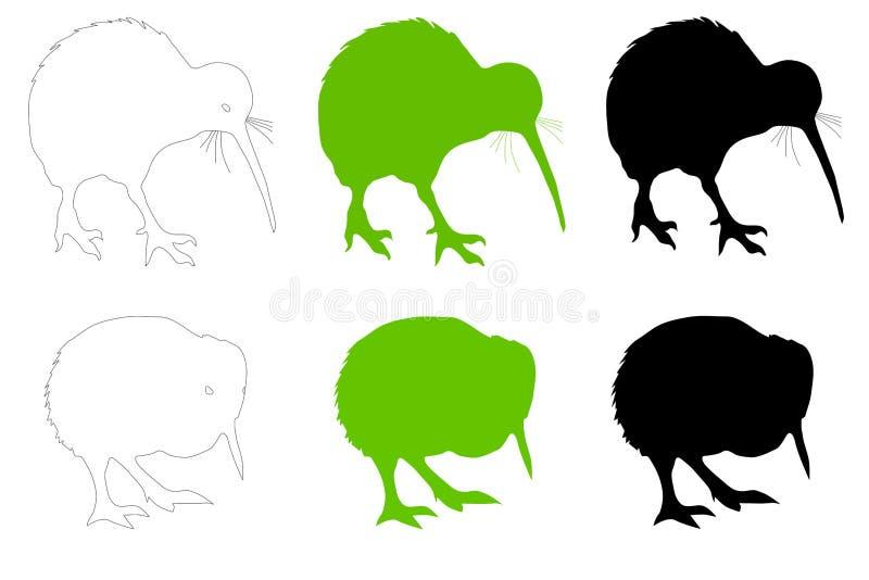 猕猴桃鸟成人&婴孩向量例证 库存照片