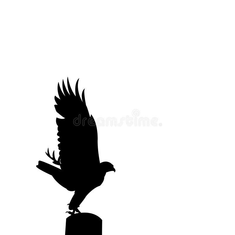 猛禽剪影 向量例证