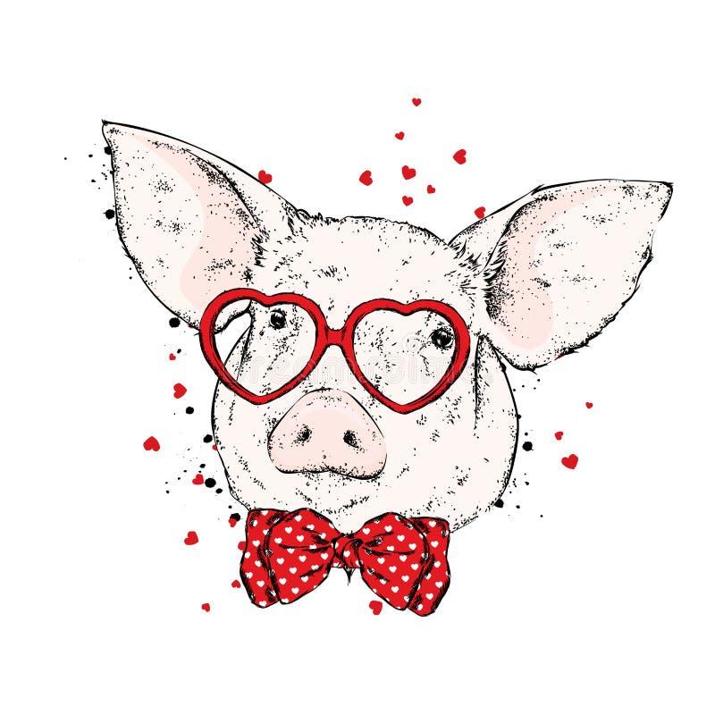 猪与以心脏的形式玻璃和与领带 皇族释放例证