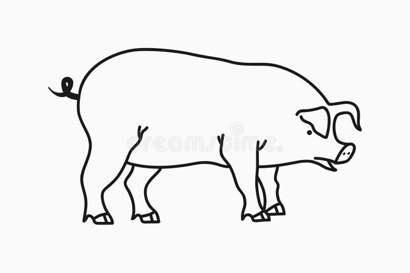 猪剪影 在白色背景隔绝的手拉的猪 向量 向量例证