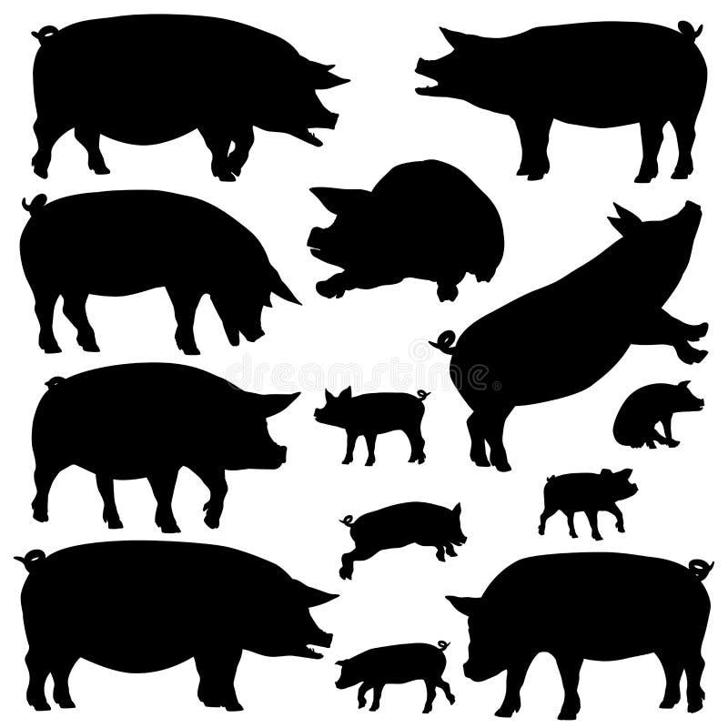 猪剪影 皇族释放例证