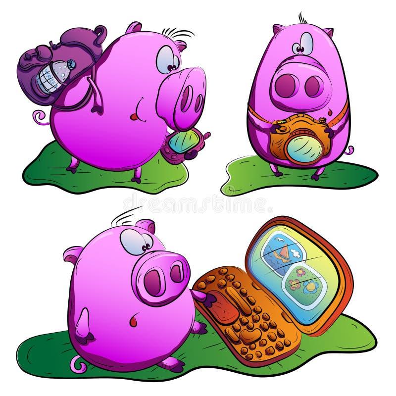 猪在旅途上。 库存照片