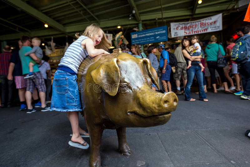 猪在派克集市上 库存照片
