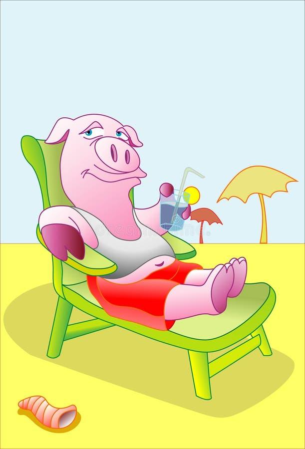 猪放松 库存图片