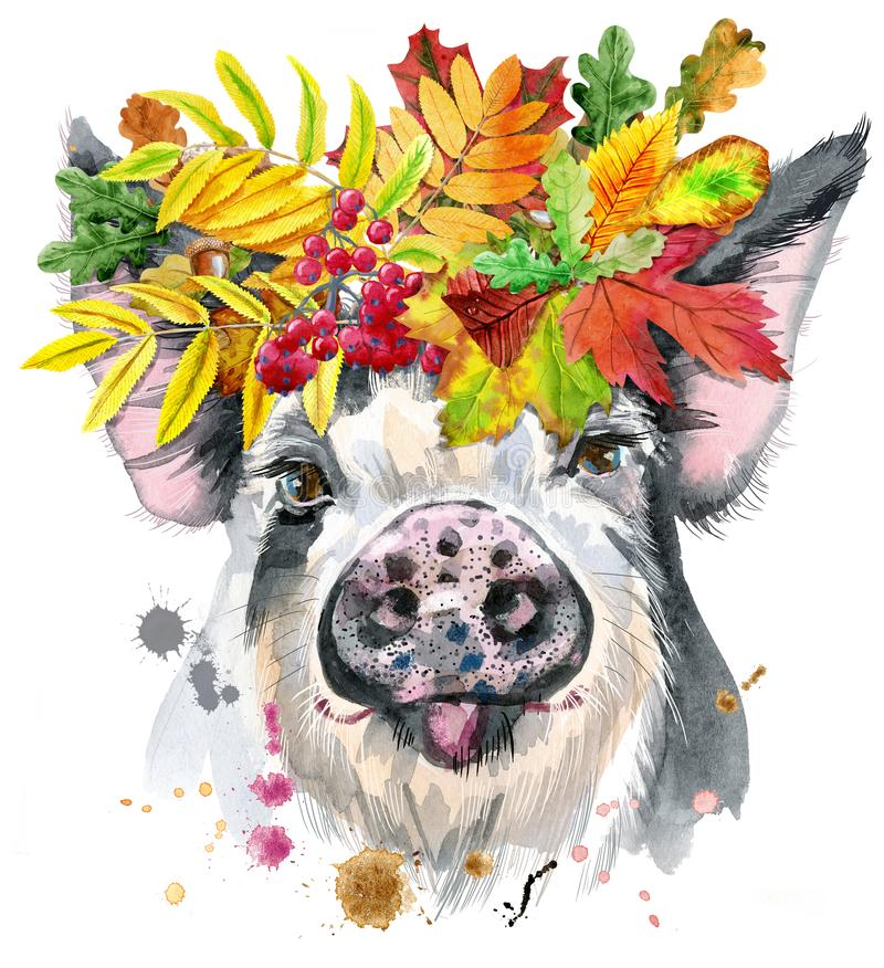 猪水彩画象与叶子花圈的图片