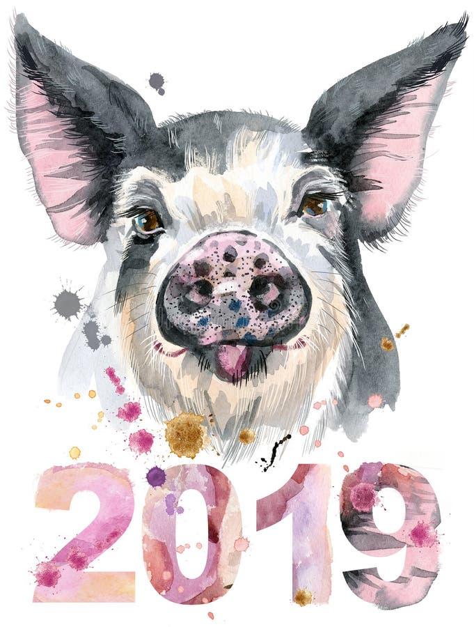 猪水彩画象与年2019年.图片