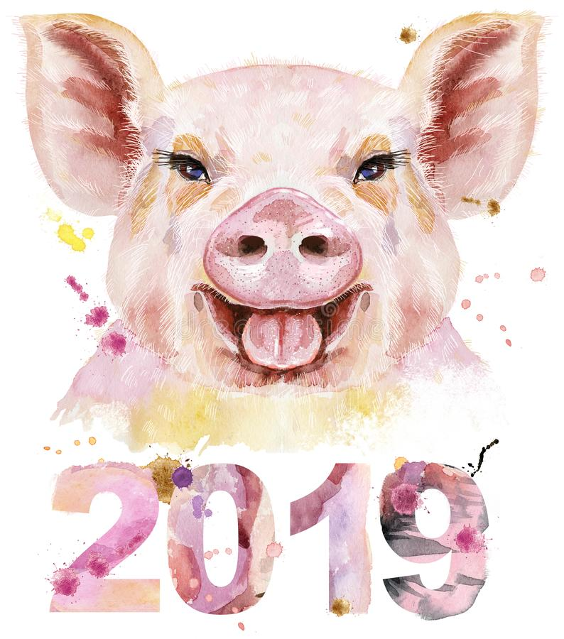 猪水彩画象与装饰的年2019年.图片