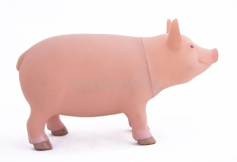 猪玩具 库存图片