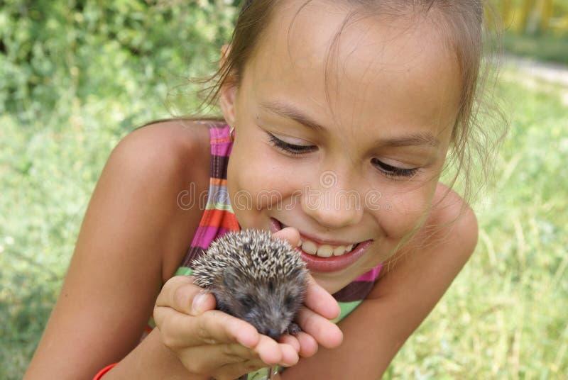 猪肉女孩的杉木 免版税库存照片