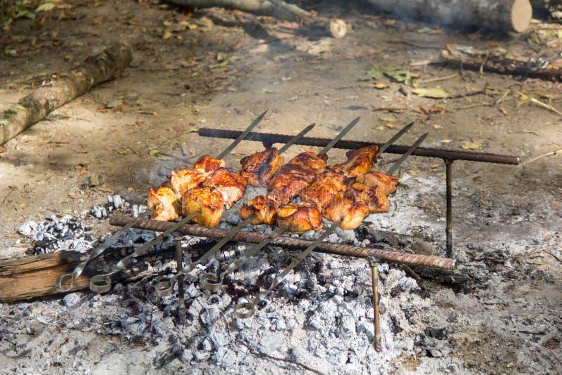 猪肉Kebab Shashlik串起在野餐的烤肉 免版税库存照片