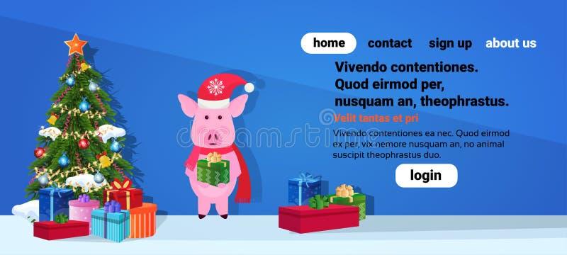 猪藏品在杉树新年快乐圣诞快乐概念平的水平的横幅拷贝空间附近的礼物盒身分 向量例证