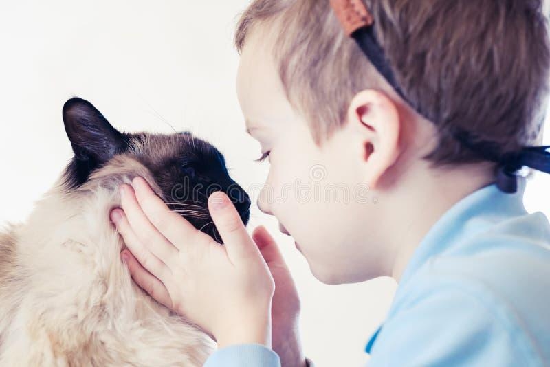 猫一起儿童巴厘语使用 年轻喜爱 库存图片