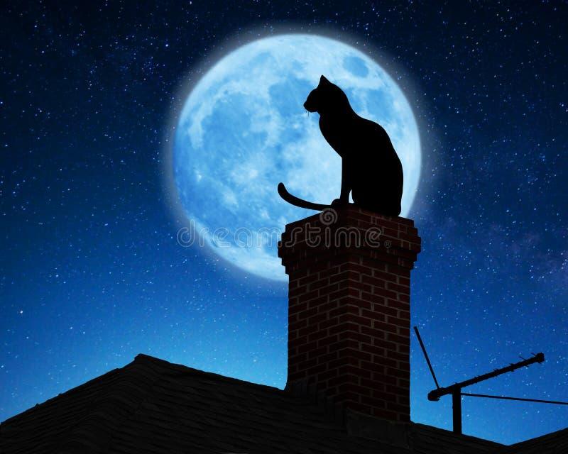 猫例证屋顶向量 免版税库存图片