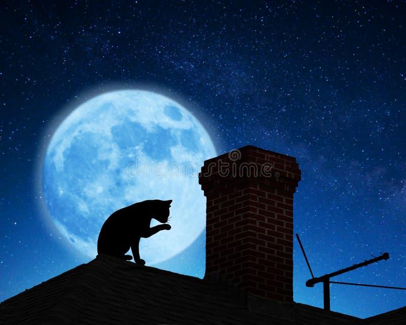 猫例证屋顶向量 库存图片