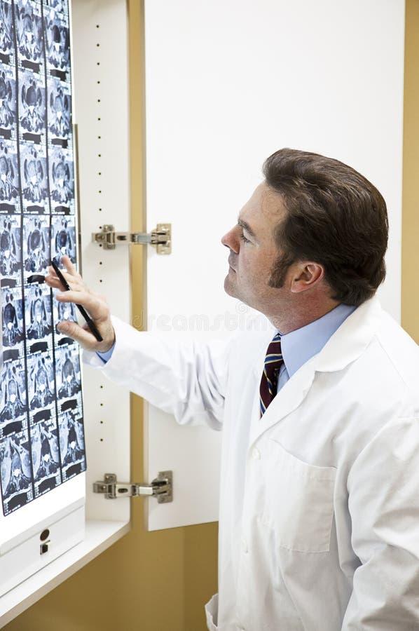 猫医生检查扫描 免版税图库摄影