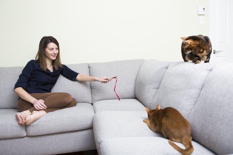 猫和妇女在长沙发的客厅 库存照片