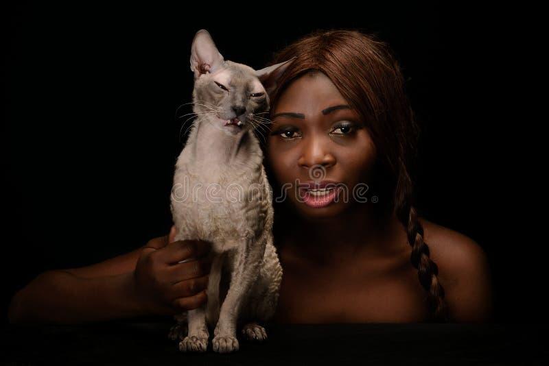 猫和所有者扔石头的两个 免版税库存图片