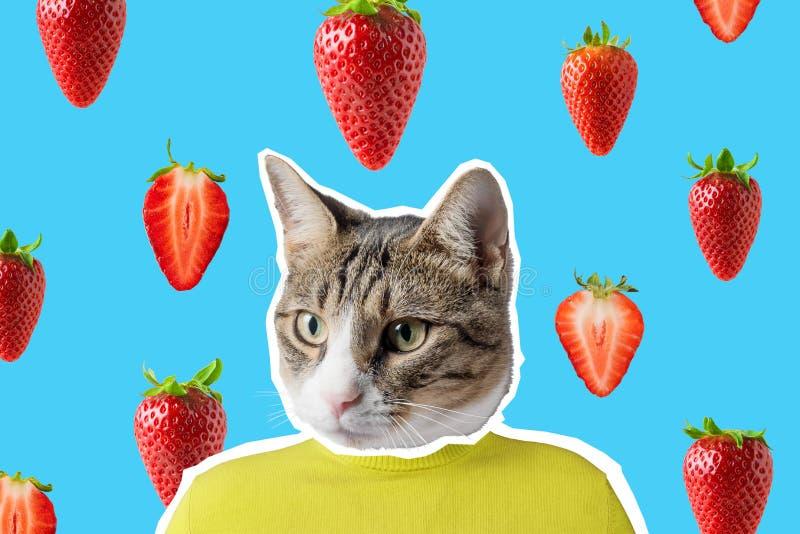 猫和草莓拼贴画,流行艺术构思设计 最小的充满活力的夏天背景 免版税库存图片