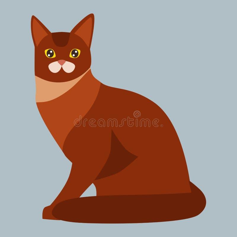 猫品种埃塞俄比亚逗人喜爱的宠物画象蓬松红色可爱的动画片动物和俏丽的乐趣演奏似猫的坐的哺乳动物 皇族释放例证