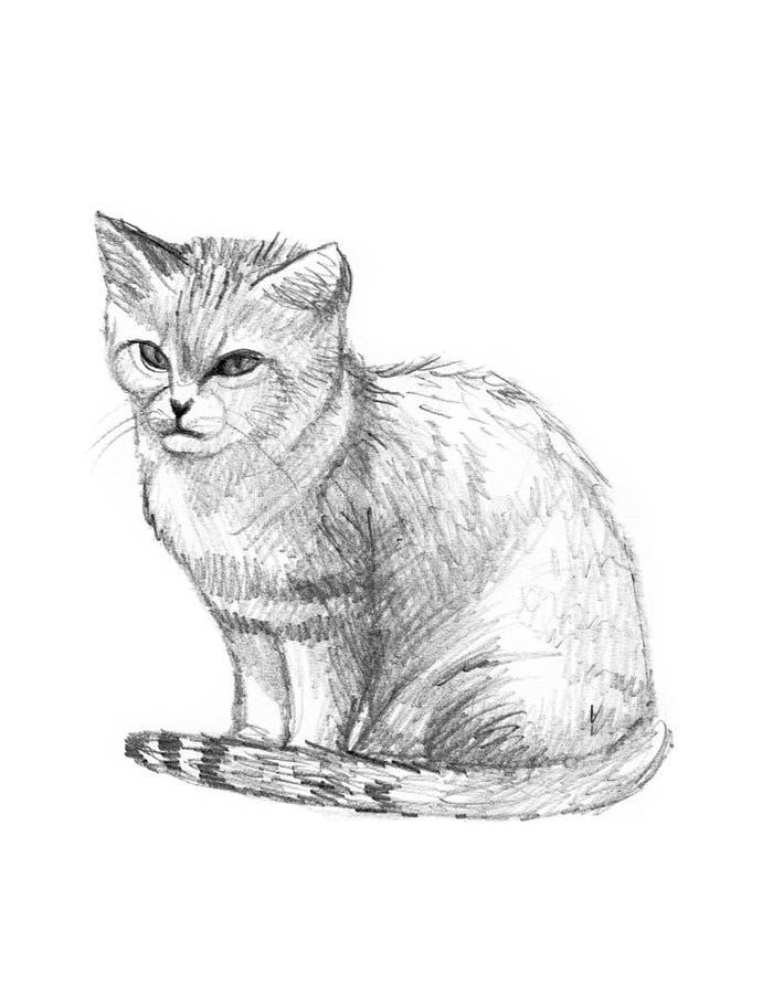 猫图画沙子草图 向量例证