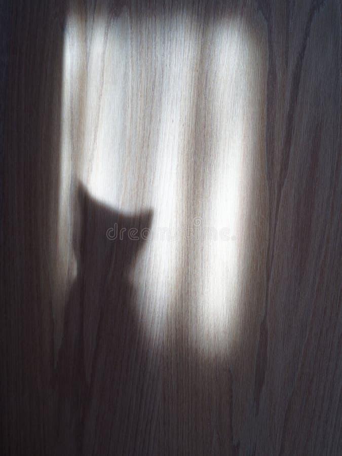 猫在门的阴影剪影 免版税图库摄影