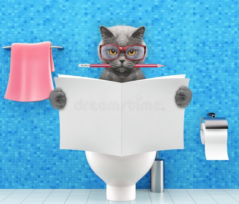猫坐有消化问题或便秘读书杂志或报纸和文字的一个马桶座 库存照片