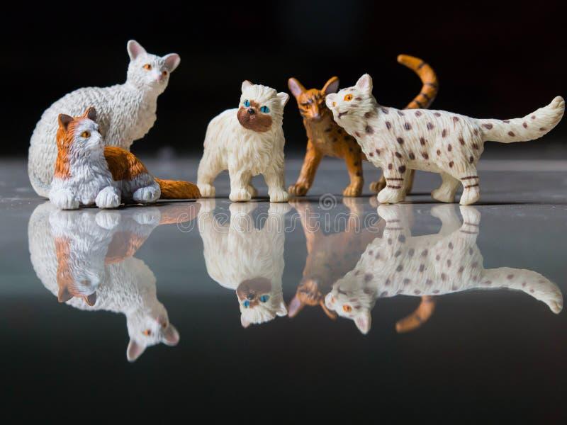 猫塑造 免版税库存图片