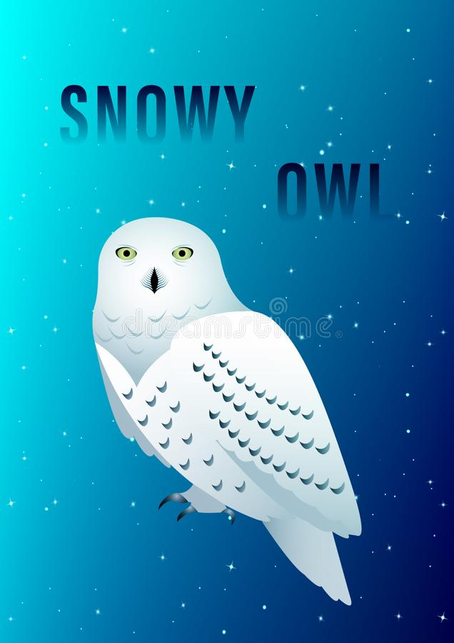 猫头鹰布拉格多雪的动物园 库存例证