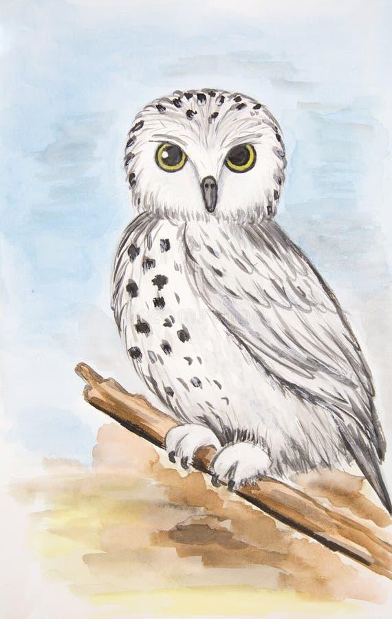 猫头鹰的画象坐在蓝色背景的一个分支 库存例证