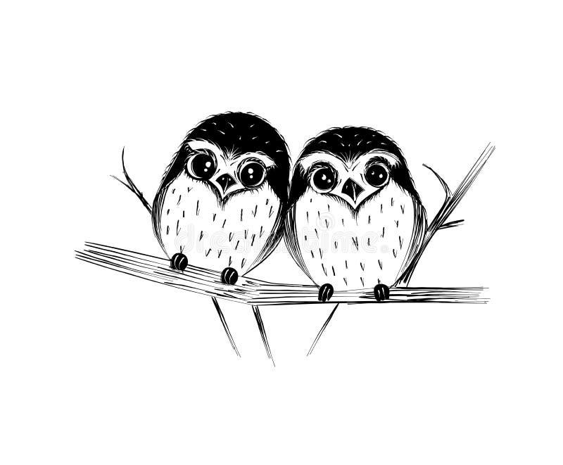 猫头鹰逗人喜爱的夫妇在白色隔绝的分支的 库存例证