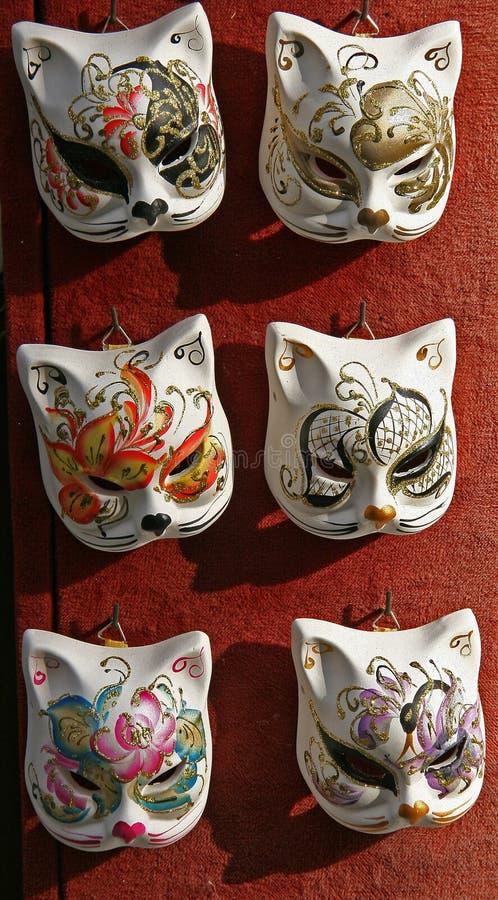 猫威尼斯式的面罩 免版税库存图片