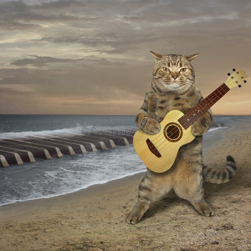 猫弹在海滩的吉他 免版税图库摄影