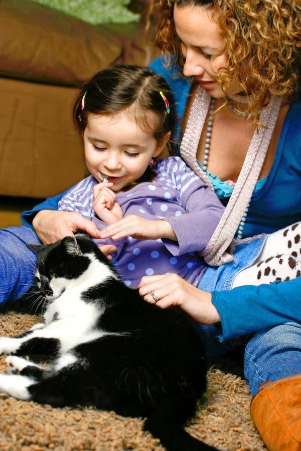 猫我们全部赌注的爱 免版税库存照片