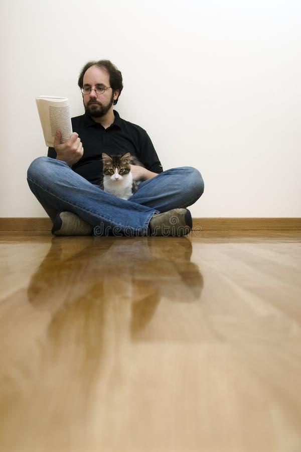 猫我的读取 库存照片