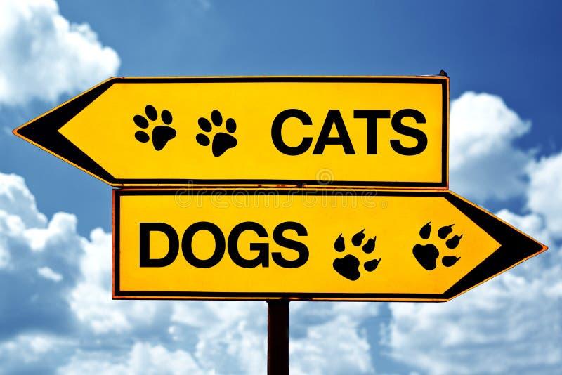 猫或狗,在标志对面 库存图片