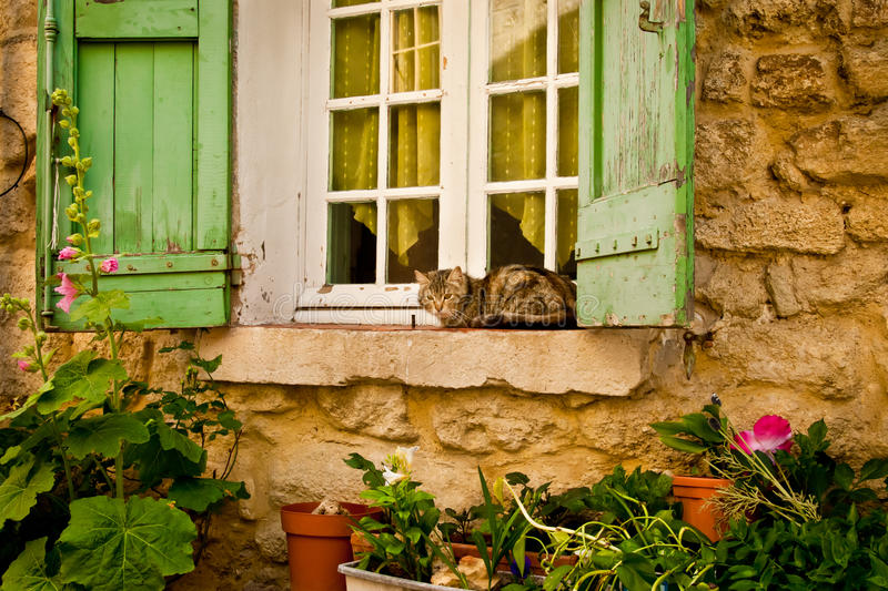 猫房子基石视窗 免版税库存图片