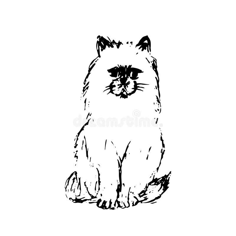 猫手拉的剪影  黑在白色背景隔绝的线描 蓬松小的宠物 逗人喜爱的毛茸的坐的小猫 向量 库存例证