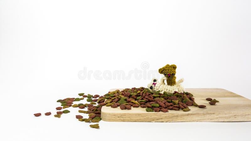 猫新鲜大块的食物 免版税库存照片