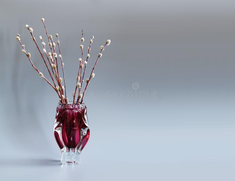 猫杨柳在红色花瓶的树枝 杨柳,标志棕枝全日假日的枝杈 灰色背景 复制空间 库存照片