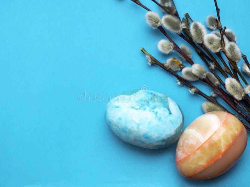 猫杨柳枝杈用在蓝色的复活节彩蛋 库存图片