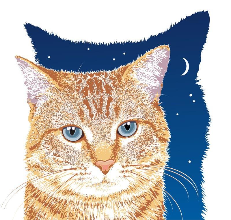 猫桔子 向量例证