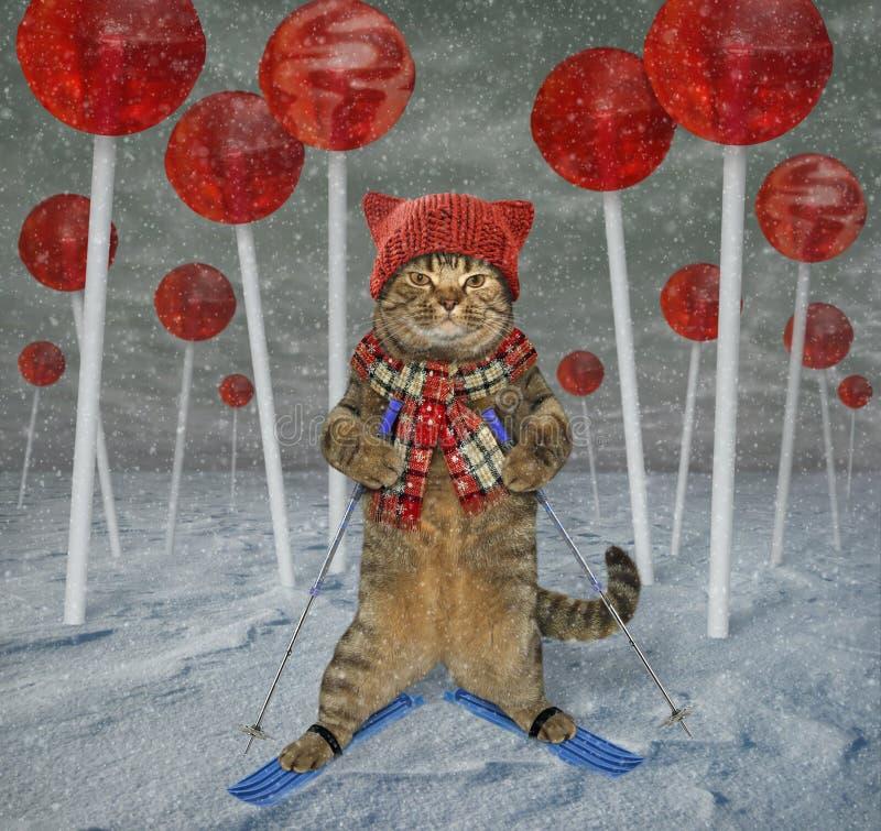 猫滑雪者在棒棒糖森林里 免版税库存图片