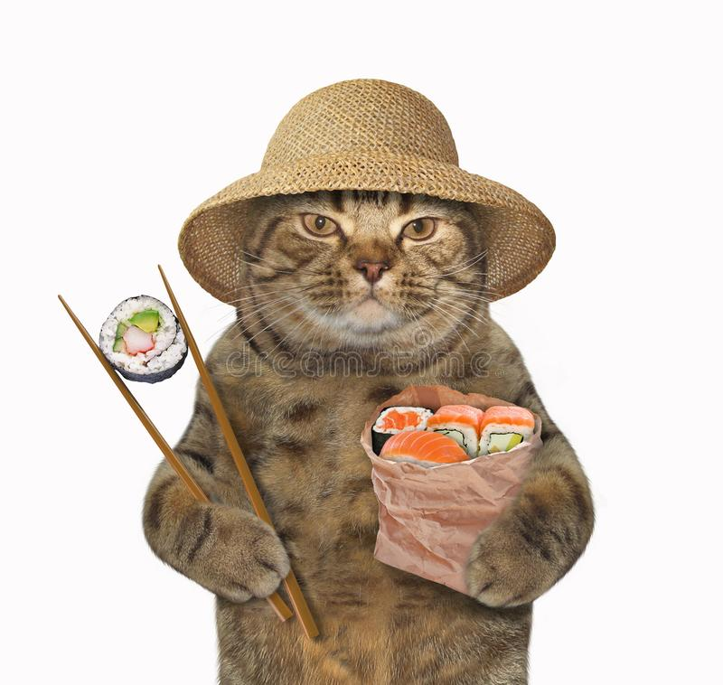 猫用寿司和筷子 向量例证