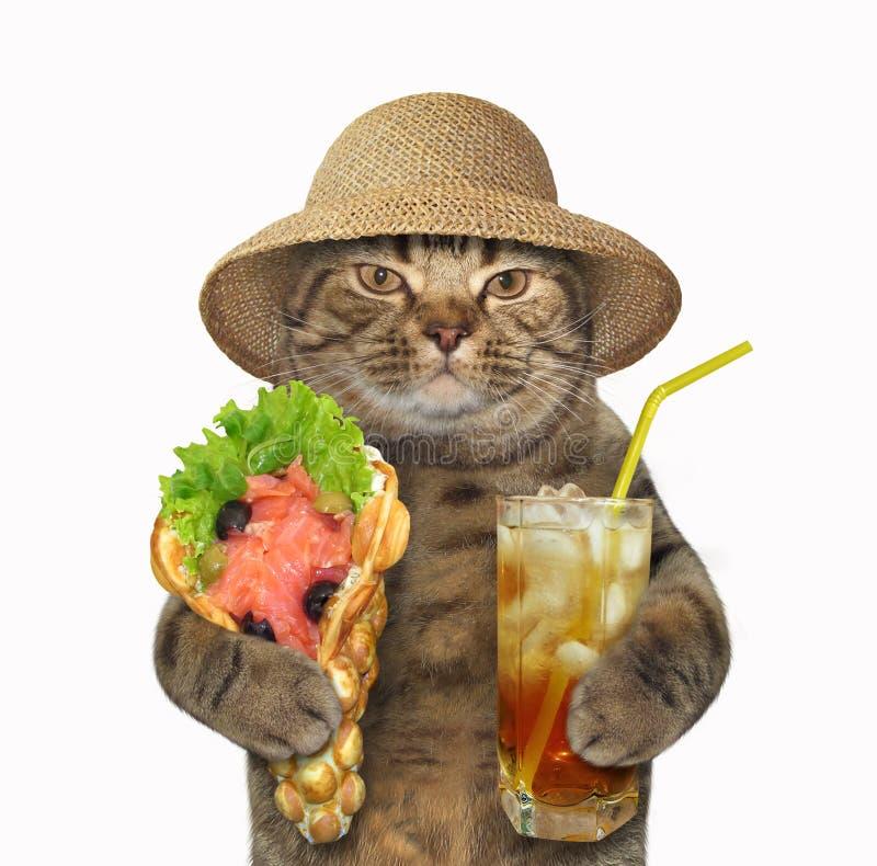 猫用软的奶蛋烘饼和茶 库存图片