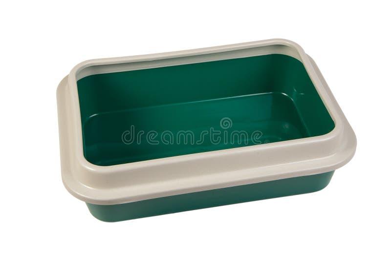 猫的绿色洗手间 库存照片